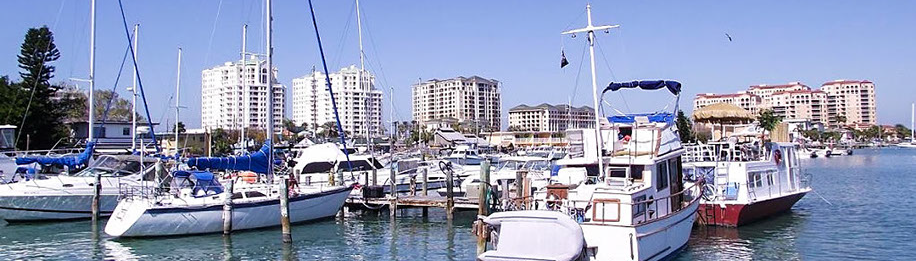 Design Strategies is located in beautiful Clearwater, Florida.