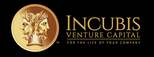 Logo design and branding for Incubis Venture Capital of Florida.